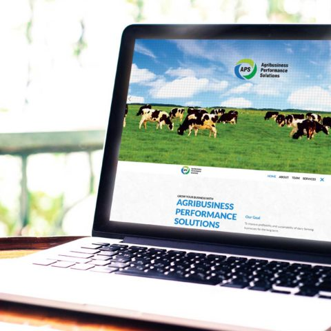 Agribusiness Performance solutions Website